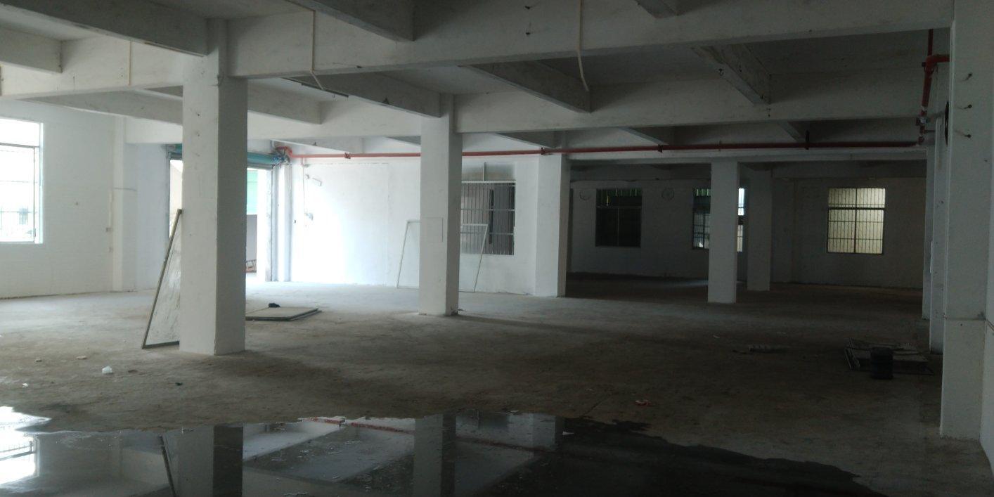 惠州市河南岸新出一楼厂房1000平方价格好谈
