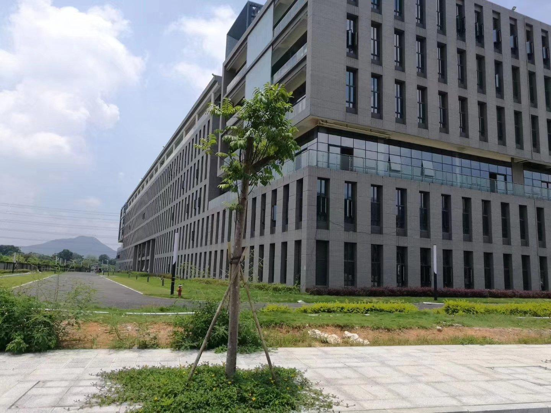 道滘红本厂房出售,产业加速中心
