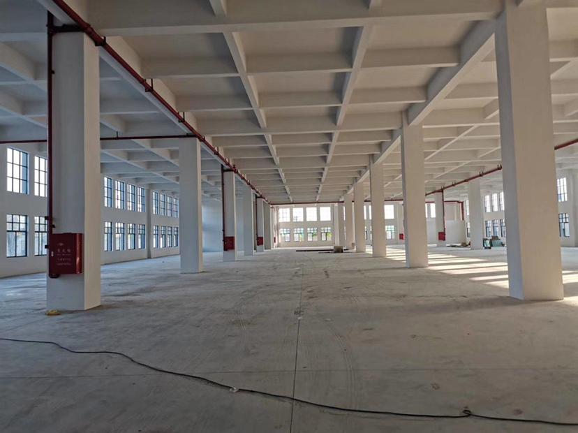 惠州园洲镇全新厂房17000平一楼6米