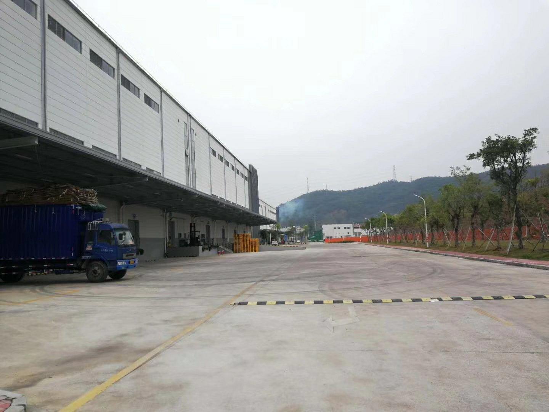 东莞3万平米仓储用地层高11米物流园招租