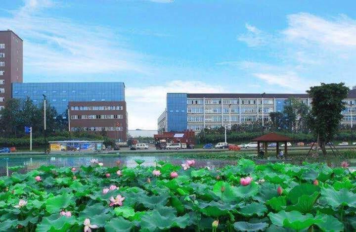 龙泉经开区内100平小面积写字楼可注册生产型企业配家具空调图片3