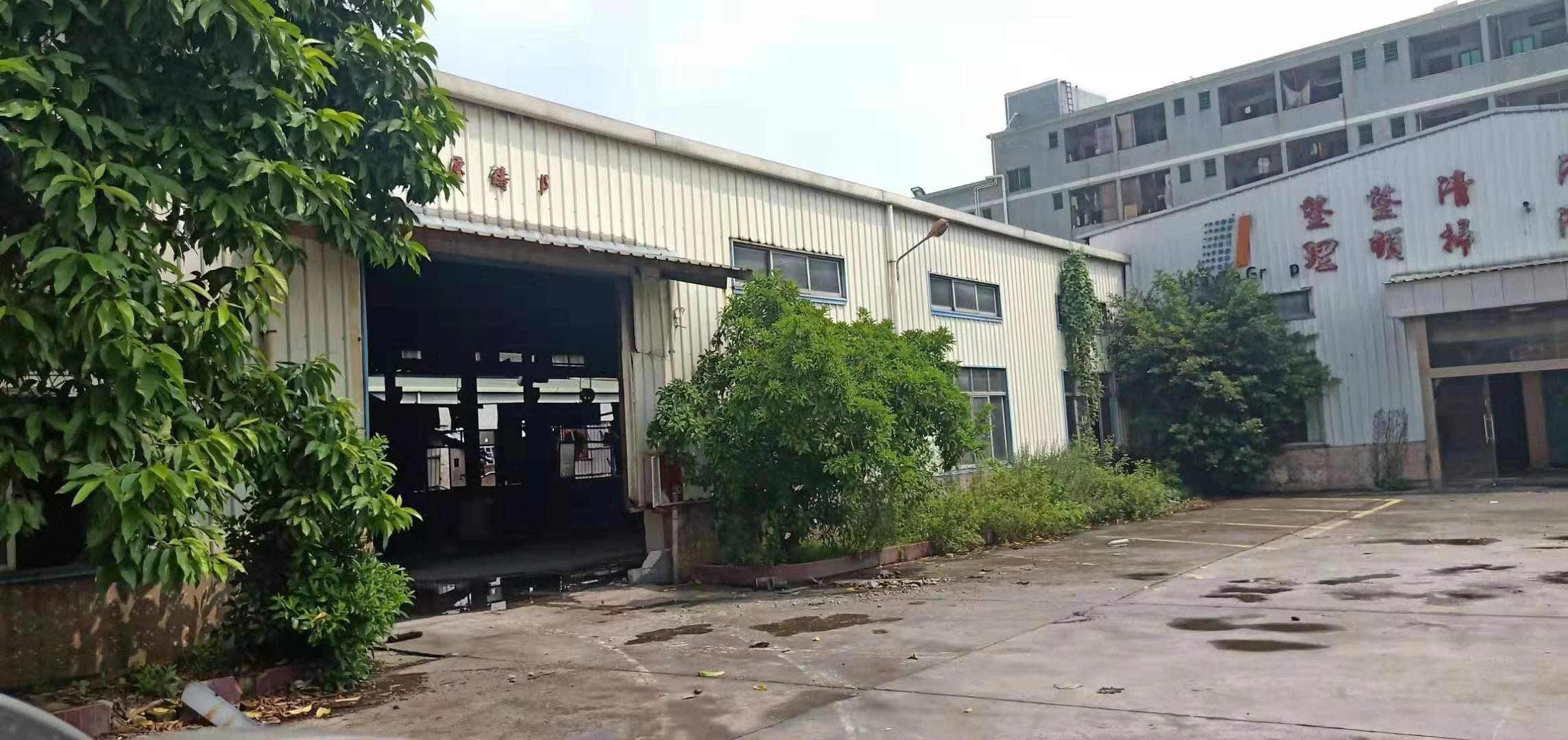 樟木头樟洋独院钢构厂房3000平方出租