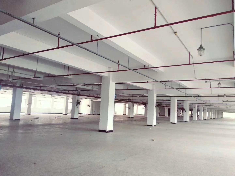 前海红本厂房,有消防喷淋,可以办环评,一楼超高11米,