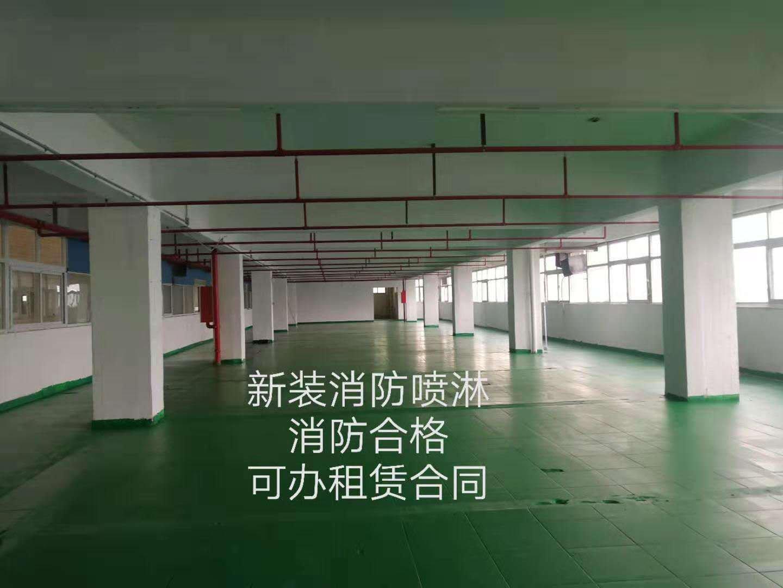 沙井西部工业区楼上整层896平米15元厂房出租有喷淋好办环评
