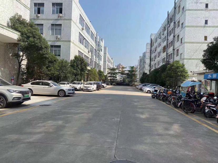 黄江经典小独院村委集体4800厂房出售