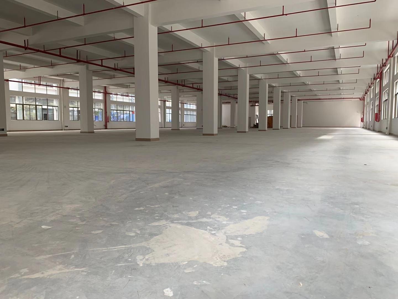 1800平原房东一楼仓库