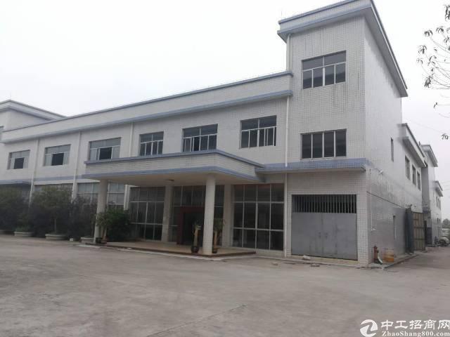 深圳市南山区前海路村委厂房出售