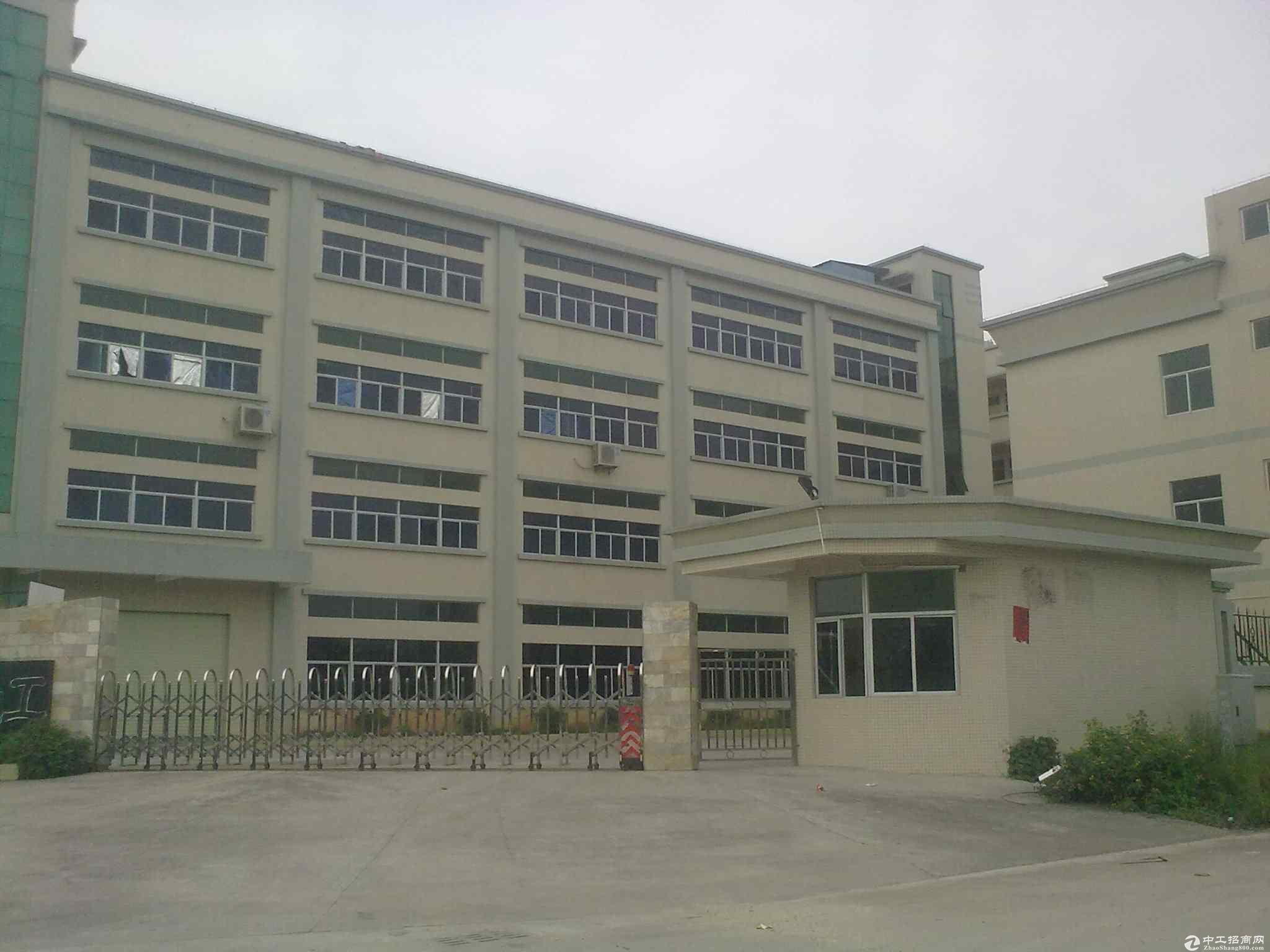 大岭山厂房形象好价格低优质国有厂房出售占地15000m²