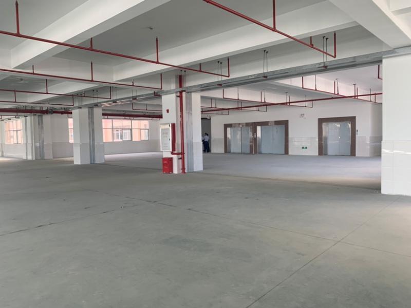 广州南沙占地25亩建筑13000平国有红本厂房出售超大空地-图2