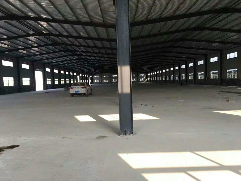 惠州新出原房东新建钢构厂房3栋9600平方可分租