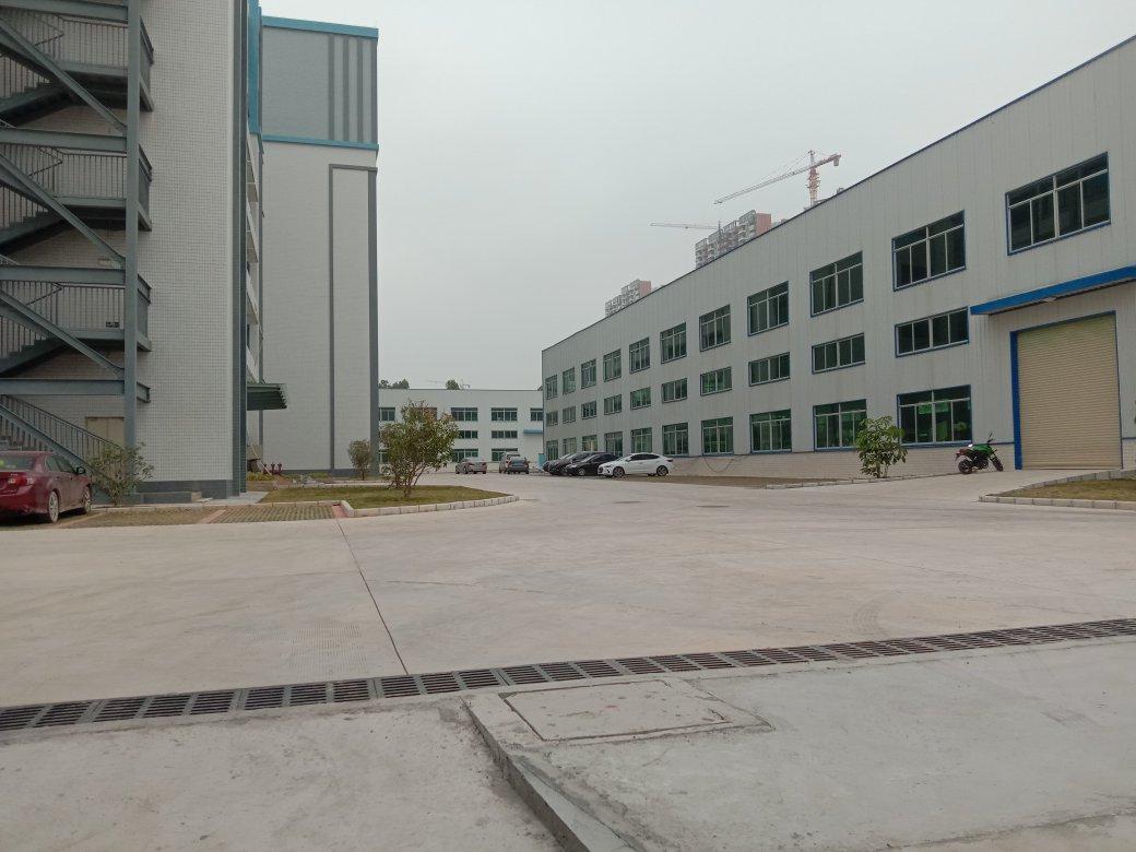 惠城区马安原房东钢构厂房出租4000平方