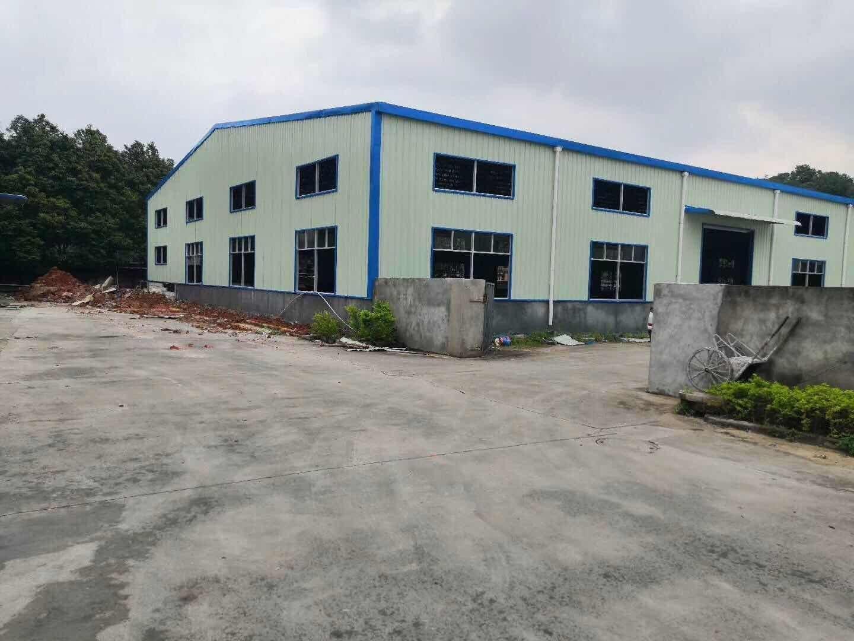 清溪原房东钢构小独院厂房出租1400平方米7米高国土证
