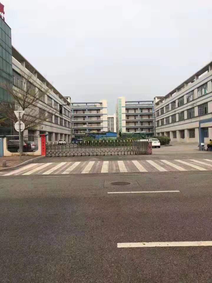 寮步镇泉塘村原房东实际面积出租