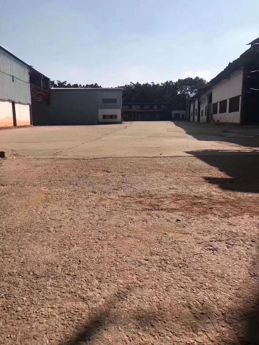 松岗大田洋单一层钢结构4000平方厂房出租