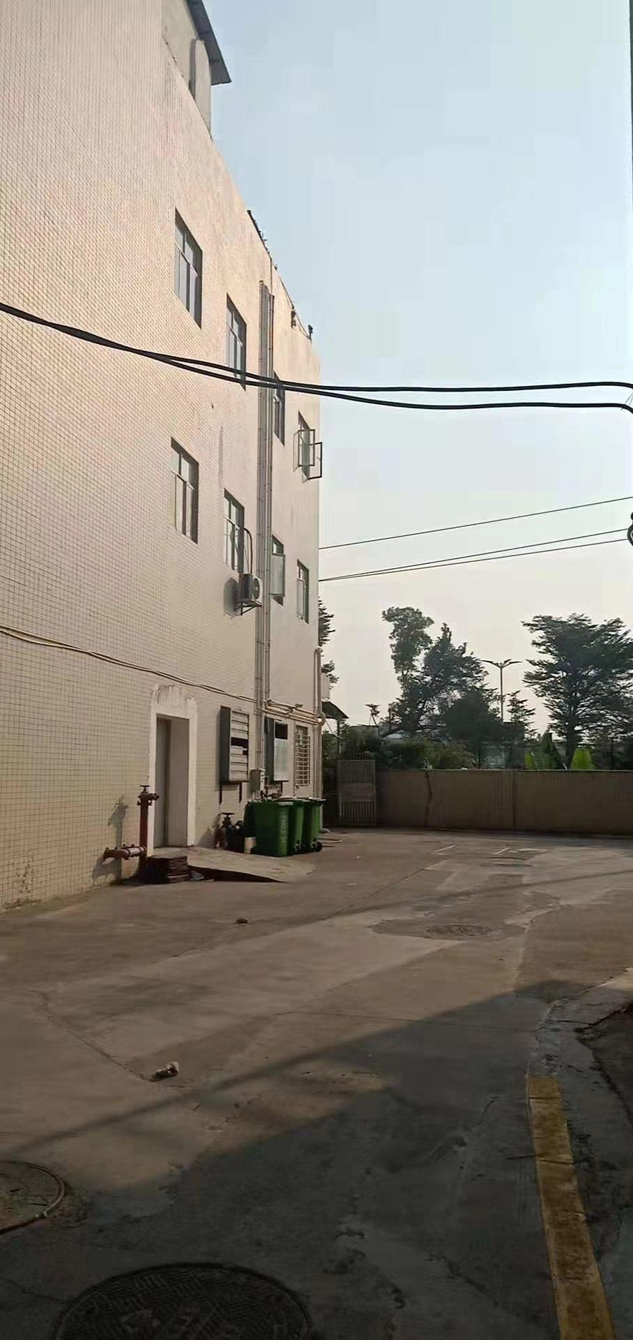 一楼!西乡广深公路附近!可以进大货车!空地很大!配货梯!