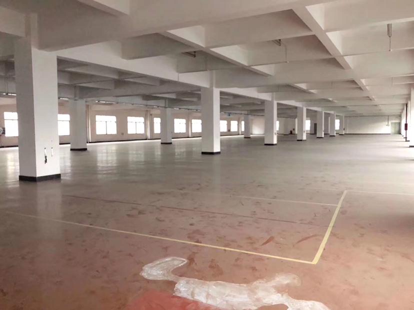 肇庆超大空间精装修红本厂房出售
