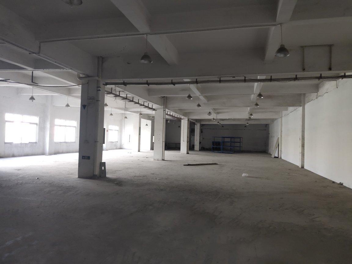 独栋1-5层厂房,适合电子,五金,办公,培训机构,自动化设等