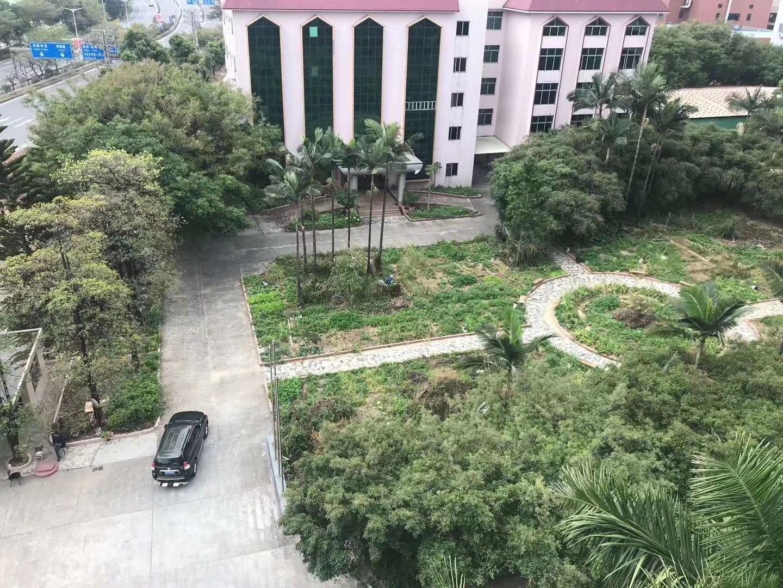 东莞万江独门独院23000平米标准厂房出租