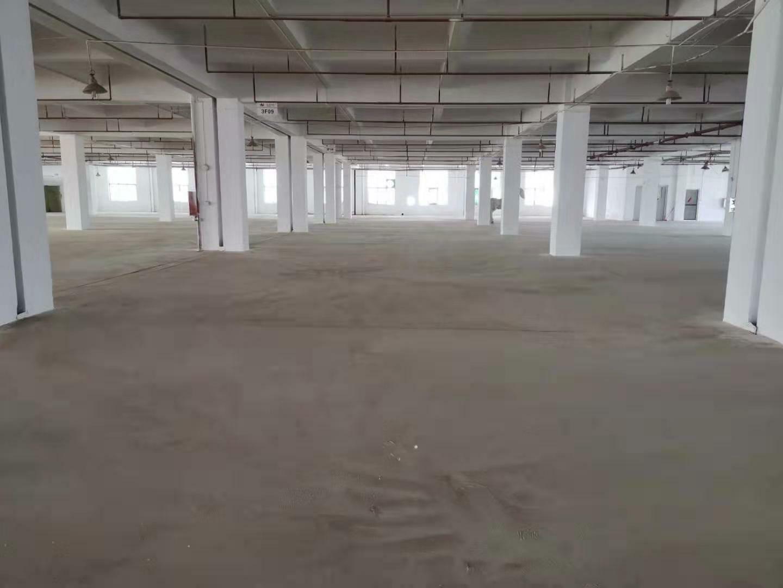沙田镇齐沙村新出标准厂房出租面积3600平方,可办理环评