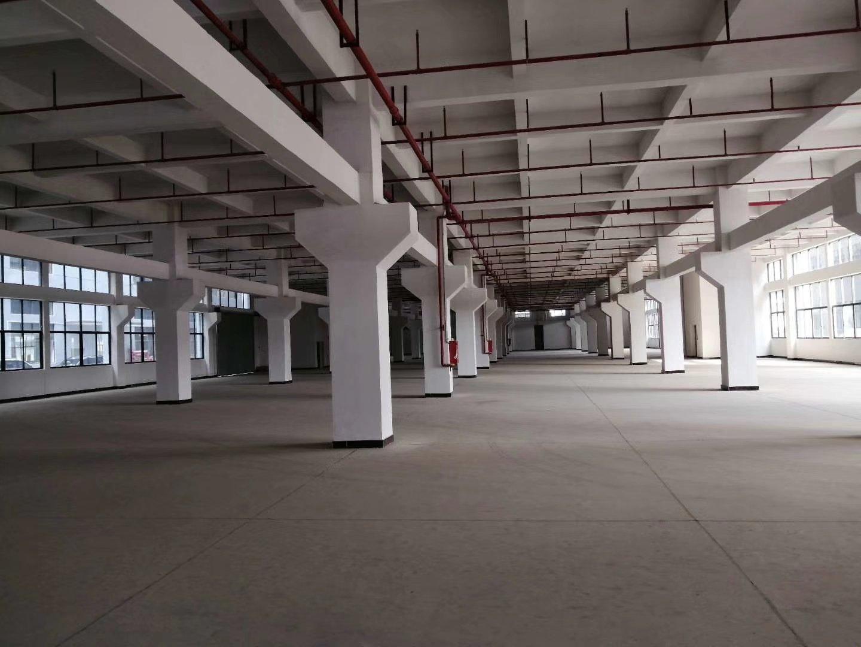 原房东一楼厂房出租。