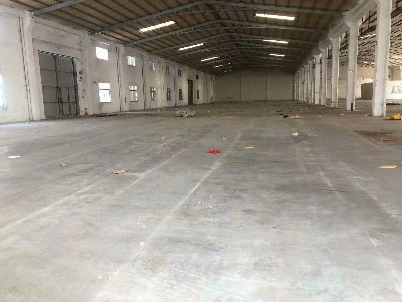 沥林镇新出砖墙到顶钢构厂房6300平方出租
