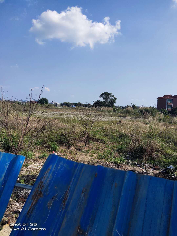 20亩集体证空地原房东出售