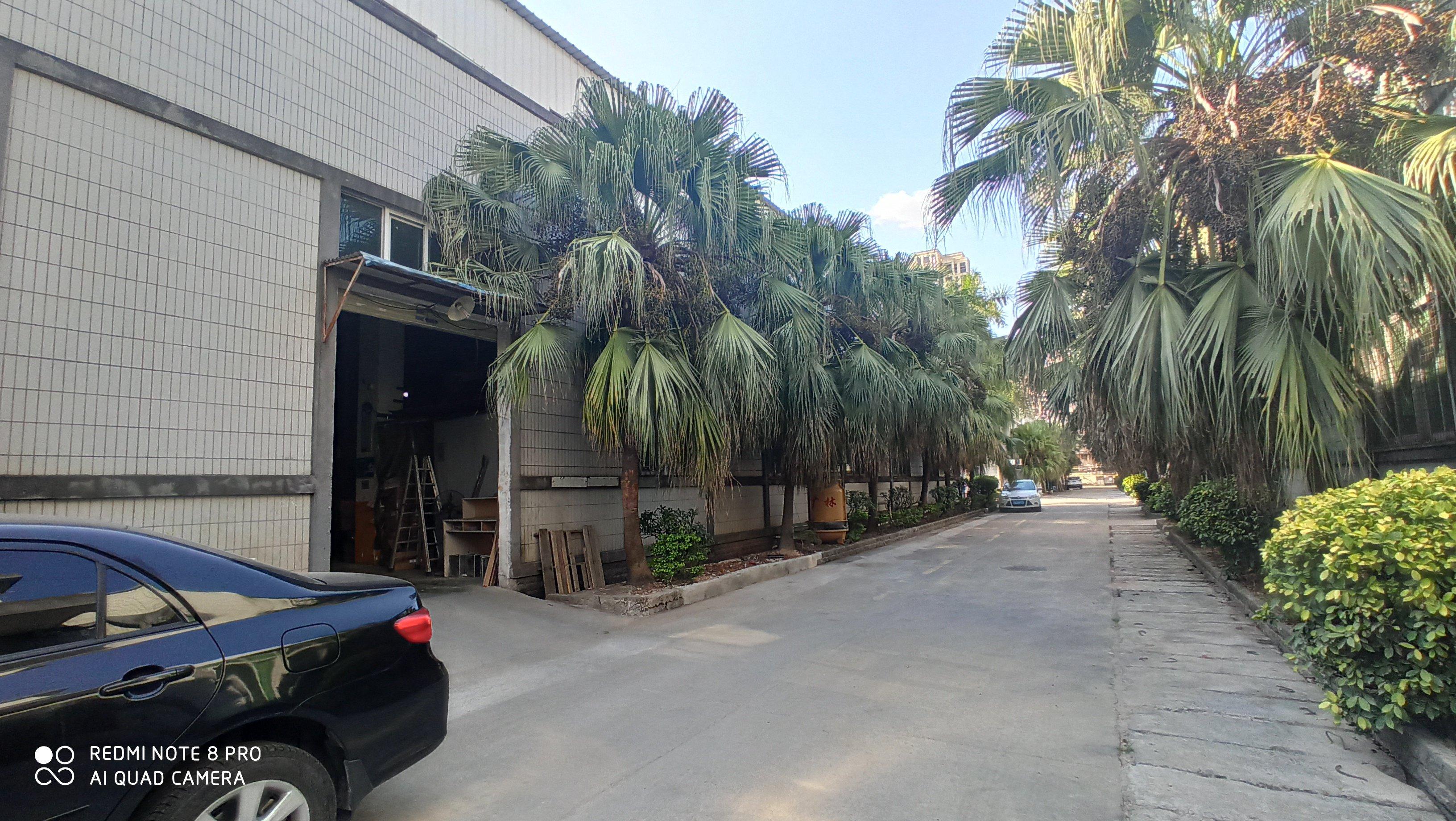 塘厦林村花园式,层高7米,现成办公室装修的标准厂房