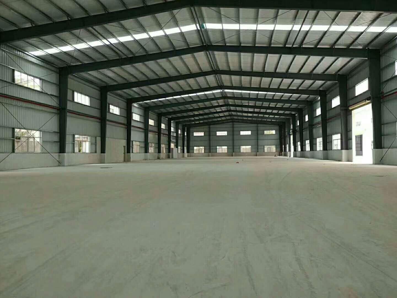 望牛墩新出单一层仓库3800㎡,滴水7米,空地超大,交通方便