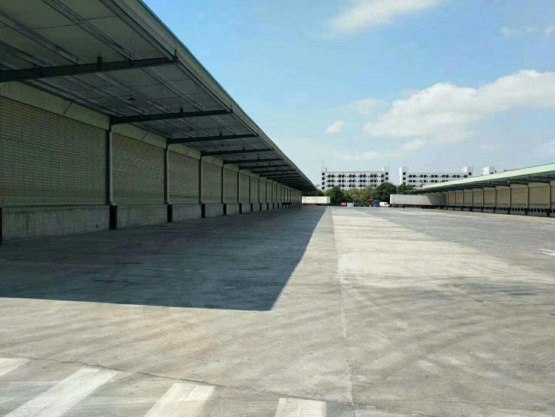 福永怀德107国道边新出15000平方,全新带卸货平台钢构厂