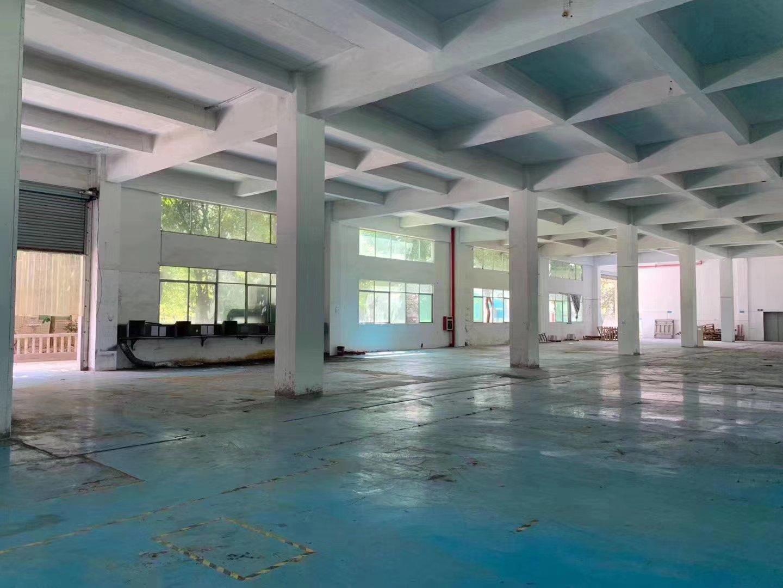 塘厦石马近观澜新出1楼1700平方,原房东带红本实际面积租