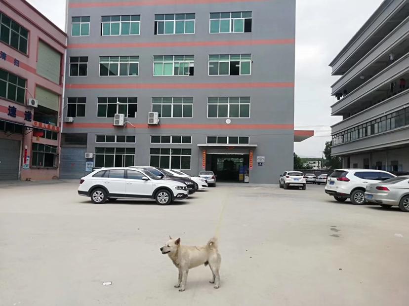 龙江镇仙塘社区楼上1400平方低价出租