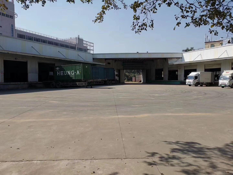 深圳市观澜5000平方钢构物流仓库出租