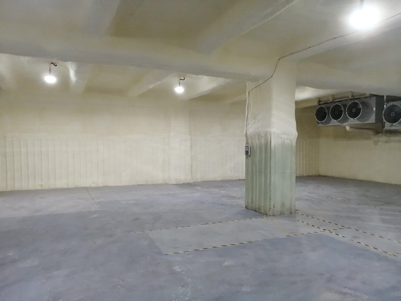 龙岗区平湖白泥坑一楼冷库600平米出租现成装修