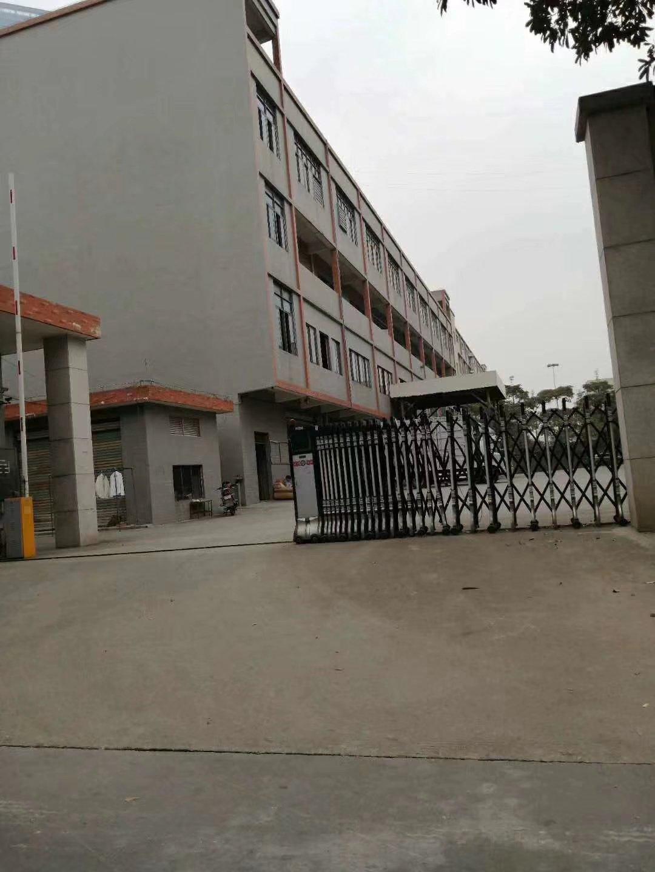 南海大沥标准厂房出售5000平米可分售