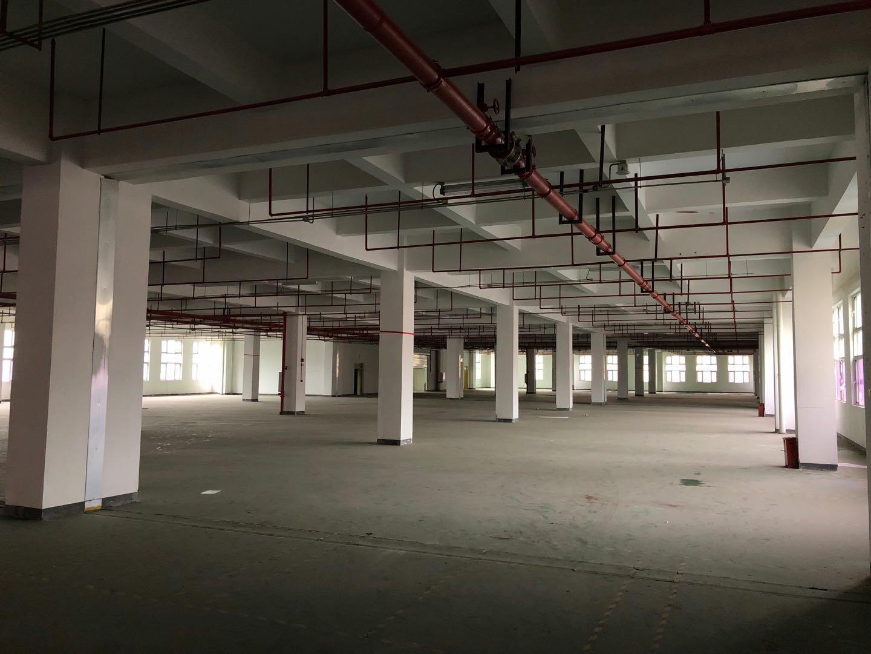 巴南区红本标准厂房食堂办公配套齐全,丙类消防可分割超长免租期