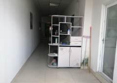 万江环城路旁边精装修写字楼办公室出租800平方仅租8元