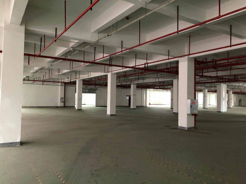 巴南区红本标准厂房食堂办公配套齐全,丙类消防可分割超长免租期-图4