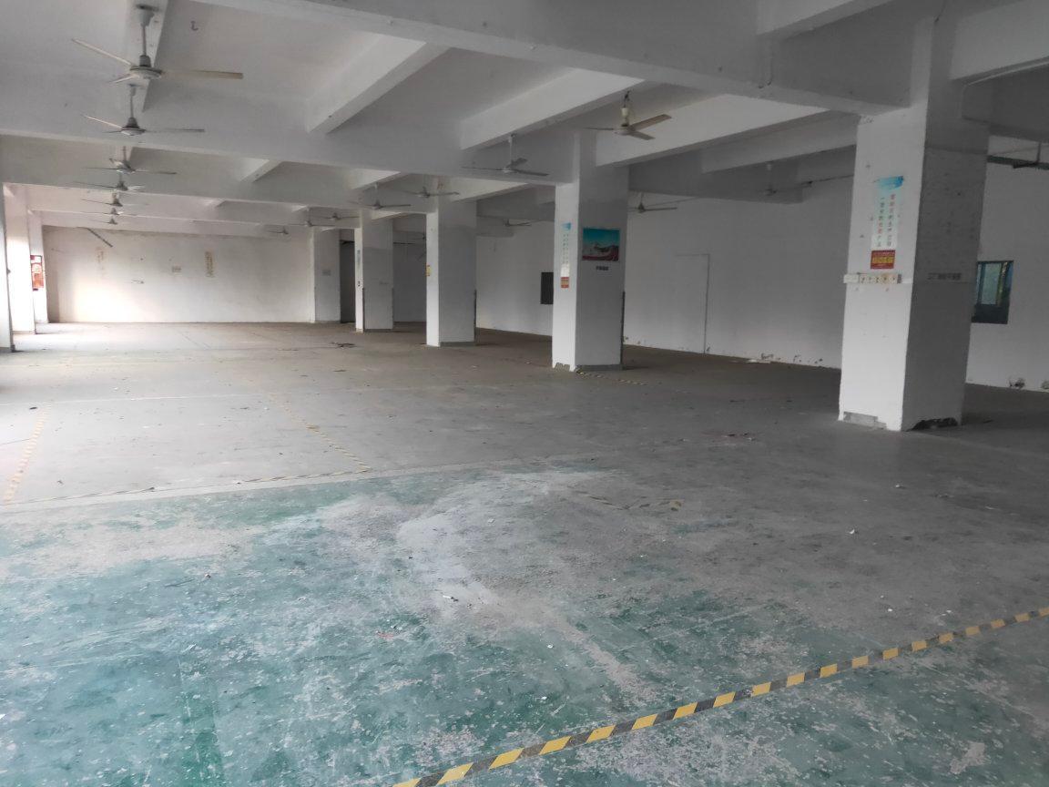 西乡钟屋国道边附近大型工业园楼上1200平米厂房仓库可分租