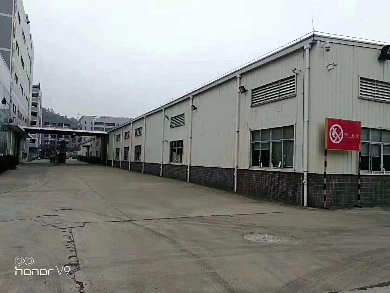 园洲镇长度70米的工业区单一层钢构厂房出租。