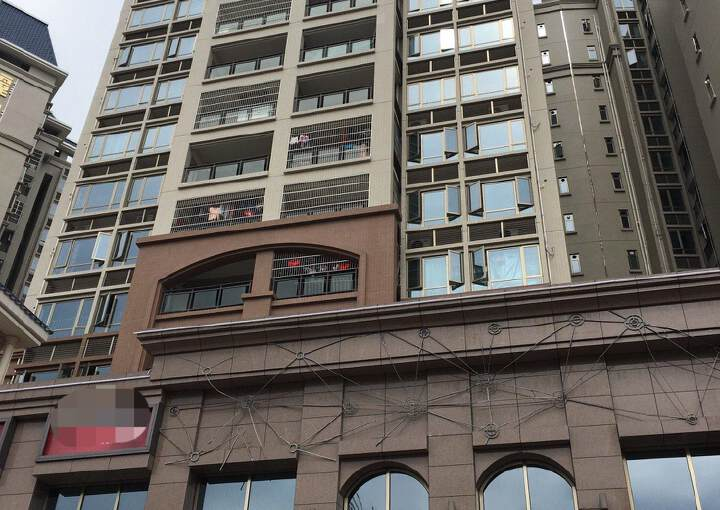 惠州惠城区江南中心地段820平方赚钱稳定黄金地段招租图片7