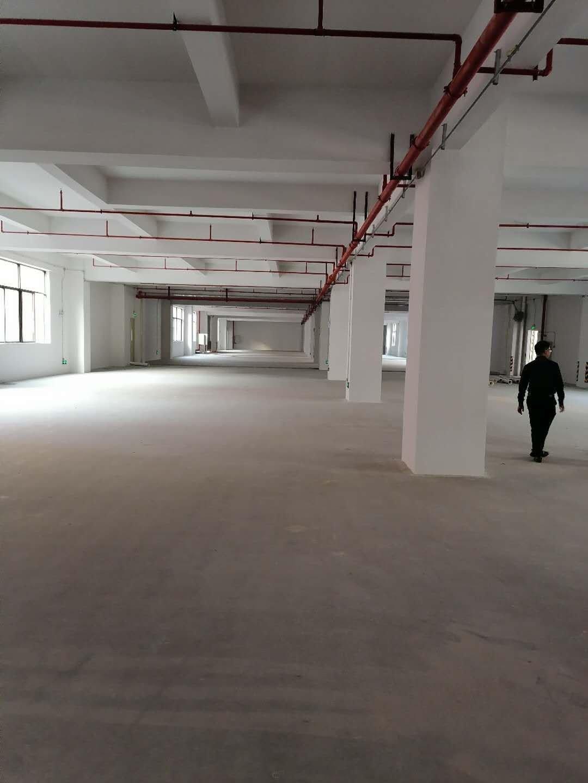 佛山市南海区大沥全新13万平方厂房出售