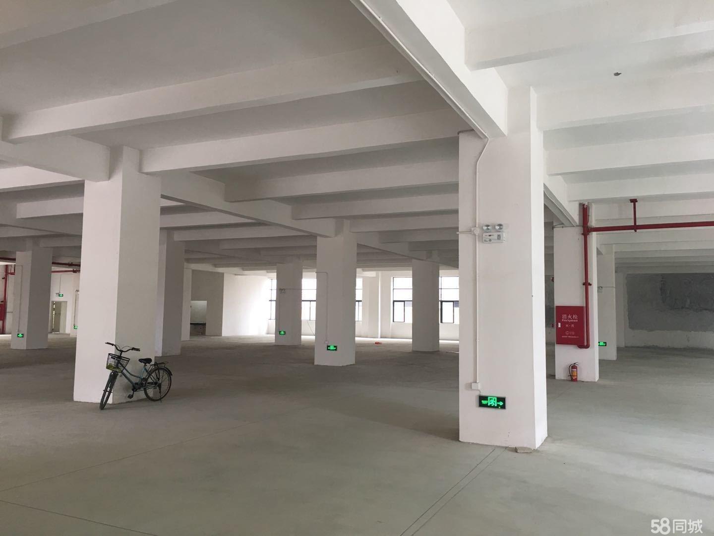 勒流富安工业区厂房500-1600平米
