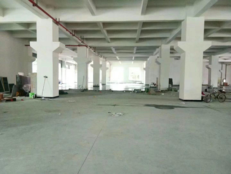 沥林镇红本万博app官方下载分租一楼850平米招租