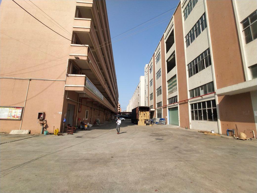 黄浦南岗街道一楼全新地坪漆厂房,滴水6.8米招租,可办环评-图3