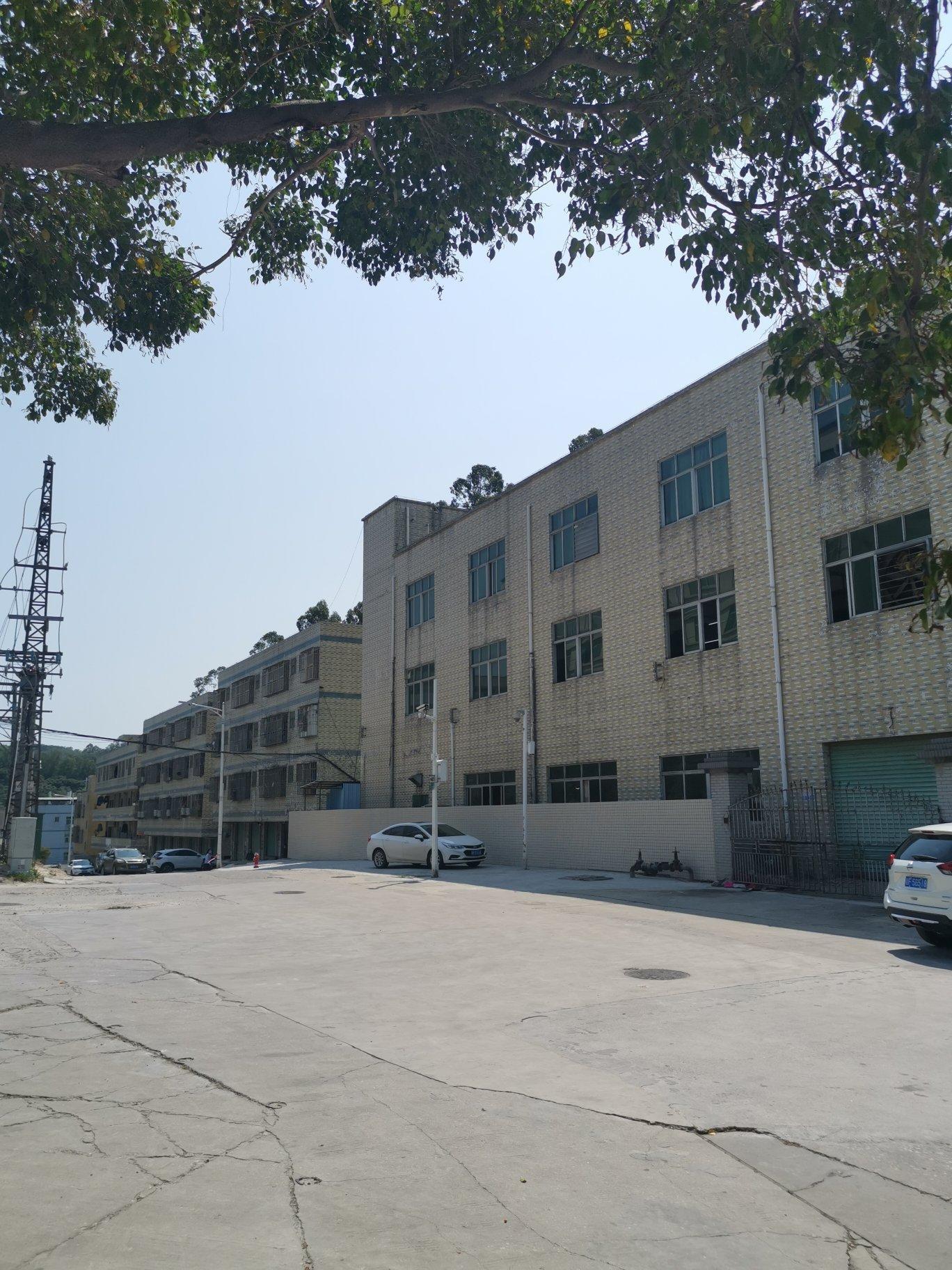 深圳村委厂房招商,占地1700平米3780平米售价1800万