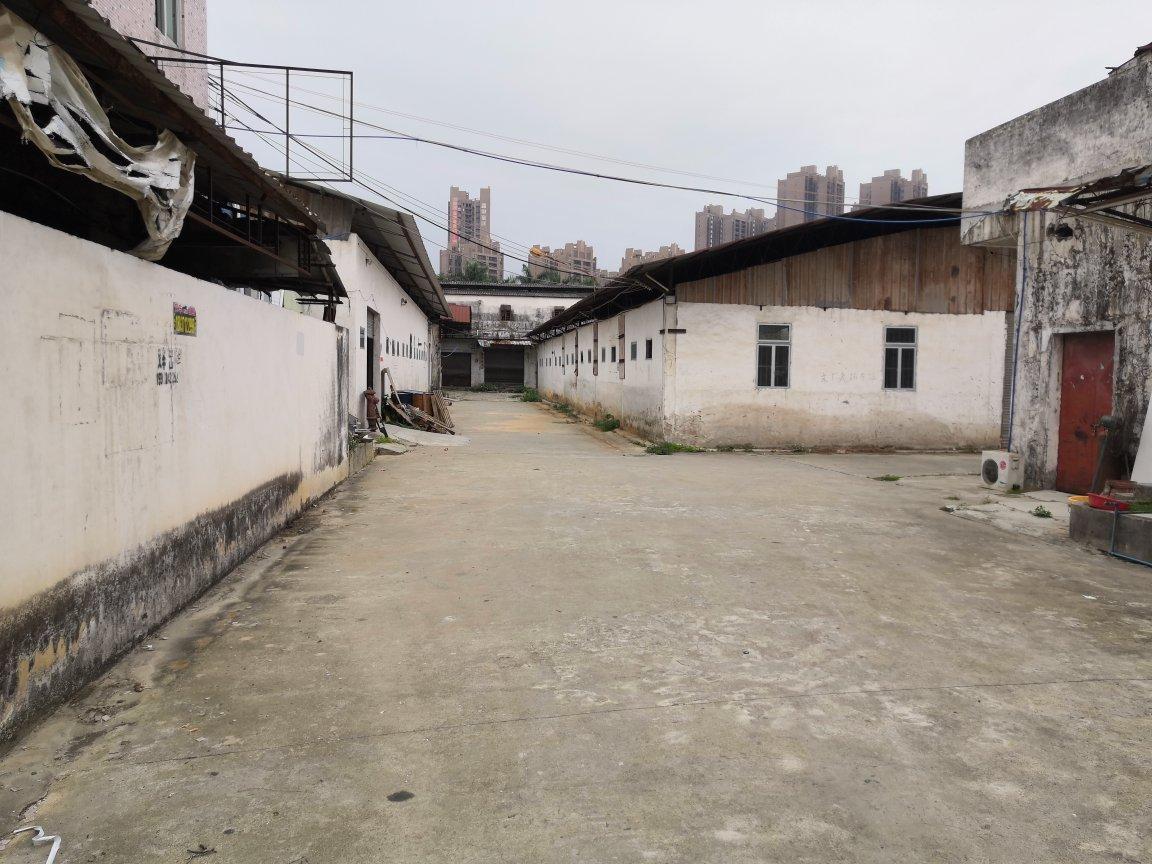 石滩新城大道旁单一层厂房出租商业中心旁交通方便可做物流仓库