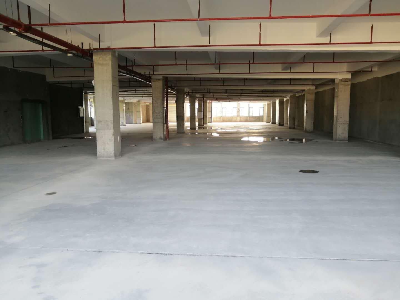 深圳周边占地4000一楼的红本厂房出租