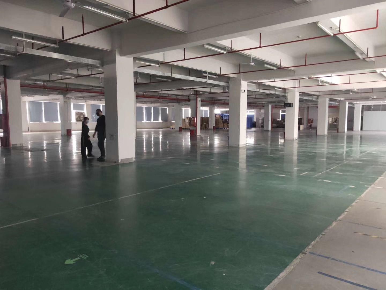 石岩塘头新出一楼重工业红本厂房1650平米招租,五金,仓库