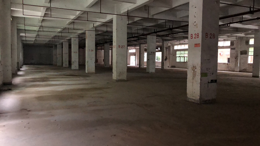 福永新和沿江高速出口附近最新出一楼3000平厂房。-图2