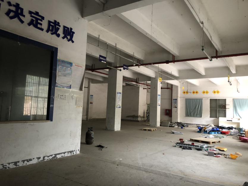 西丽白芒关一楼750平厂房招租高度6米